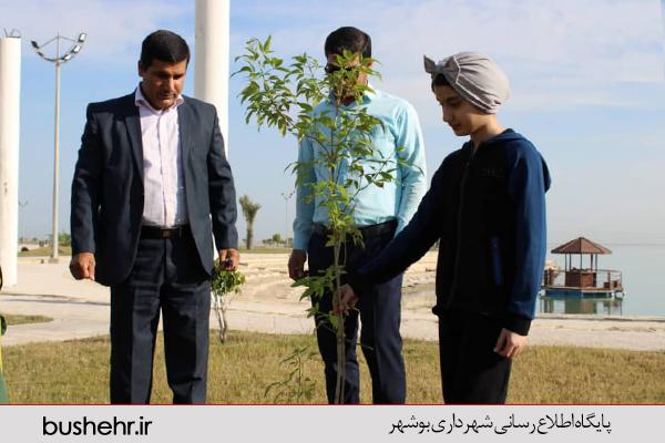هر تولد یک درخت